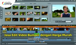 Jasa Edit Video Bumper dengan Harga Murah